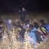 Mii de migranţi au încercat să treacă ilegal frontiera României! Au fost opriţi!