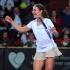 Niculescu, nominalizată de WTA pentru lovitura lunii aprilie