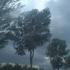 Vremea. Alertă meteo ANM: Cod portocaliu de ploi torenţiale şi vijelii în 15 judeţe