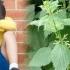 Copil pus să mănânce urzici, melci și să lingă pantofi! Cine a intervenit?