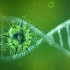 Coronavirus. 1.194 de cazuri noi, din 4.438 de teste, raportate în ultimele 24 de ore