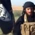 Abu Muhammad al-Adnani, numărul doi din SI, a fost ucis