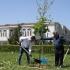 """Parcul de la Campusul Universității """"Ovidius"""" își va schimba înfățișarea!"""