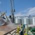 Portul Constanța conduce topul european în tranzitul de cereale