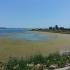 Premieră pentru lacul Techirghiol! Vezi speciile protejate!
