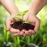 România cheltuiește acum o cincime din fondurile europene pentru mediul rural