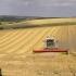 Se primesc cereri pentru finanțarea europeană a investițiilor în agricultură