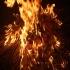 Sfântul Dumitru. Tradiții care se respectă încă de pe 25 octombrie