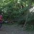 Spațiile verzi din Constanța, tratate împotriva bolilor și dăunătorilor