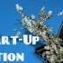 Start-up Nation, good to go! 8.700 de companii vor primi bani