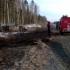 Tragedie rutieră în Siberia