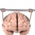 Cum să ne antrenăm creierul? Specialiştii ne recomandă două exerciţii!