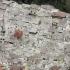 Cutremurele din Italia au deplasat solul cu 20 cm; sâmbătă va fi zi de doliu naţional