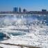 Niagara îngheţată, oameni și animale morți de frig, în SUA