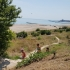 Vrei să ajungi teafăr pe noile plaje din Constanța? Mergi la anul!