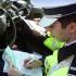 De acum, şoferii îşi pot reduce perioada de suspendare a permisului! Vezi cum!