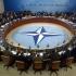 NATO se va alătura coaliţiei contra SI