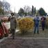 Ziua Armistițiului în Primul Război Mondial, sărbătorită la Medgidia