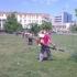 Primăria Constanța va intensifica acțiunile de dezinsecție