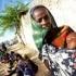 Apogeul crizei economice va fi foametea din 2020