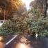 IGSU: Zeci de răniți, ca efect al furtunilor cumplite din România