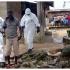 Epidemie de Ebola în Congo. Mai mulți morți