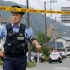 Un mort și trei răniți în explozii aproape simultane într-un parc din Japonia