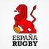 Federația Spaniolă de Rugby solicită rejucarea meciului cu Belgia