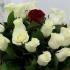 Contactează o florărie online și pregătește-i o surpriză de neuitat!