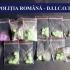 Cluburile din Mamaia, piață pentru traficanții de droguri