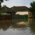 Inundații în trei localități din județul Timiș  în urma unor ploi abundente