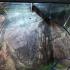 Adolescentă rănită de geamul spart al unui bazin din Acvariul Constanța