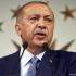 Ginerele lui Erdogan, ministru de finanţe în noul guvern