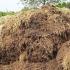 Precizări referitoare la amenajările pentru depozitarea gunoiului de grajd în exploatațiile agricole
