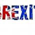 Guvernul nu crede că M. Britanie poate supravieţui în afara UE?