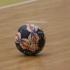 Corona Braşov, suspendată provizoriu din Cupa EHF la handbal feminin