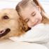 Îl sărbătorim pe cel mai bun prieten al omului. E Ziua internațională a câinelui!