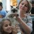 VIVO!(s) los Felinos!  Ziua premiilor la concursul de pisici !