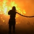 Incendiu URIAȘ la Zărnești. Ard 400 de hectare de lăstăriș