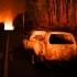 Incendiu de pădure în Portugalia: mesaj de condoleanțe de la Iohannis