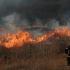Polițiștii de frontieră și sătenii s-au luptat cu flăcările în Periprava