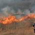 Incendiu violent în județul Constanța!