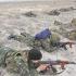 """Infanteriştii marini """"atacă"""" Delta Dunării"""