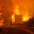 ÎNFIORĂTOR! 442.000 de hectare, distruse de incendii
