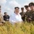 Acuzată că făcea transporturi secrete de orez către Coreea de Nord