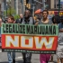 Politicienii SUA pledează pentru legalizarea marihuanei. Banii din impozite s-ar investi în educație și sănătate
