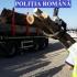 Aproximativ 35 de metri cubi de material lemnos, confiscate de polițiști