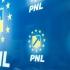 Alina Gorghiu conduce lista candidaţilor PNL pentru Senat, în locul lui Vasile Blaga