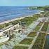 Proiect de înverzire a stațiunii Mamaia: vor fi plantați copaci pe plajă după modelul stațiunii din anii `70 -`80