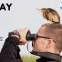 Maraton Ornitologic în Dobrogea